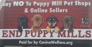 puppymillbillboard
